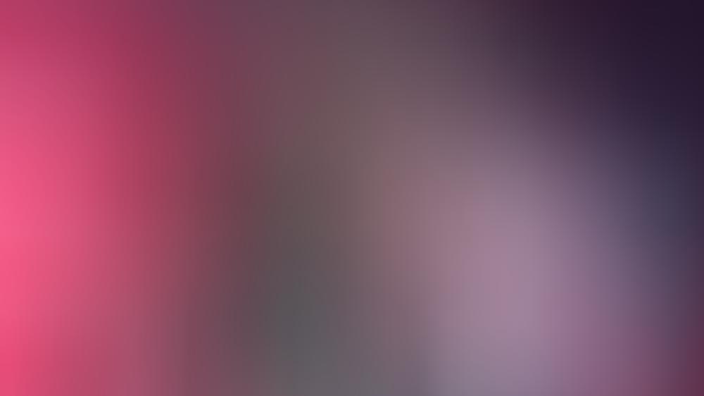 Toten Hosen sagen Auftritt bei Nova Rock ab