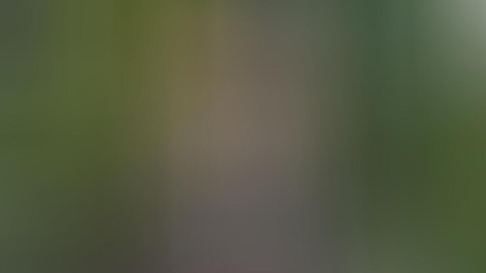 Michael Sheen wird mit 50 zum zweiten Mal Vater