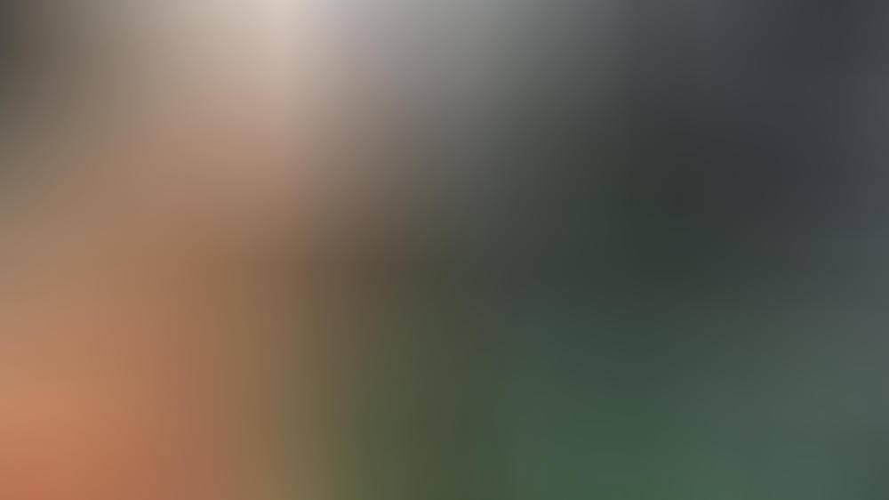 Australian Open: Kerber und Zwerev weiter