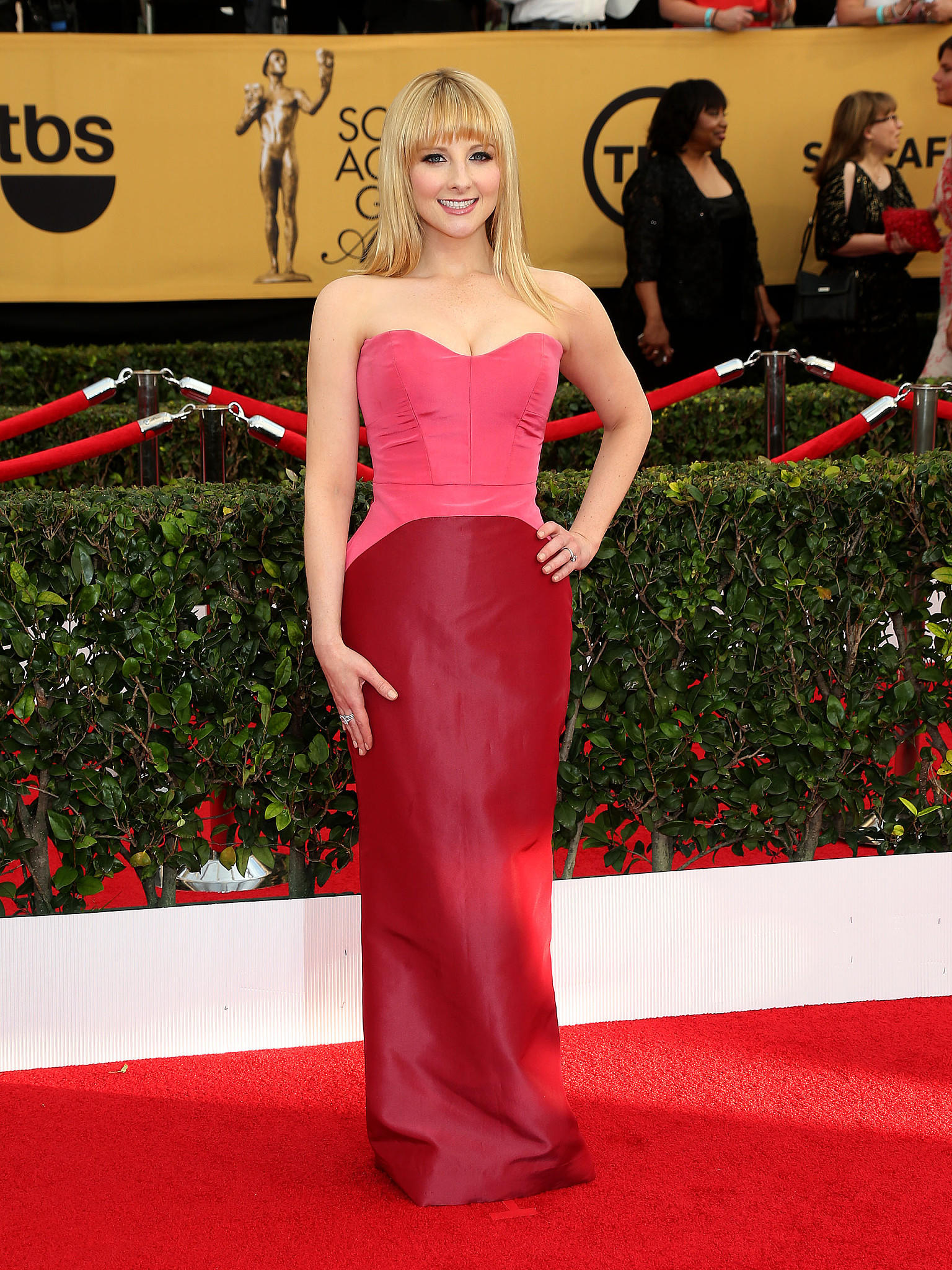 SAG Awards Award 2015 Big Bang Theory Roter Teppich Styling Kleider