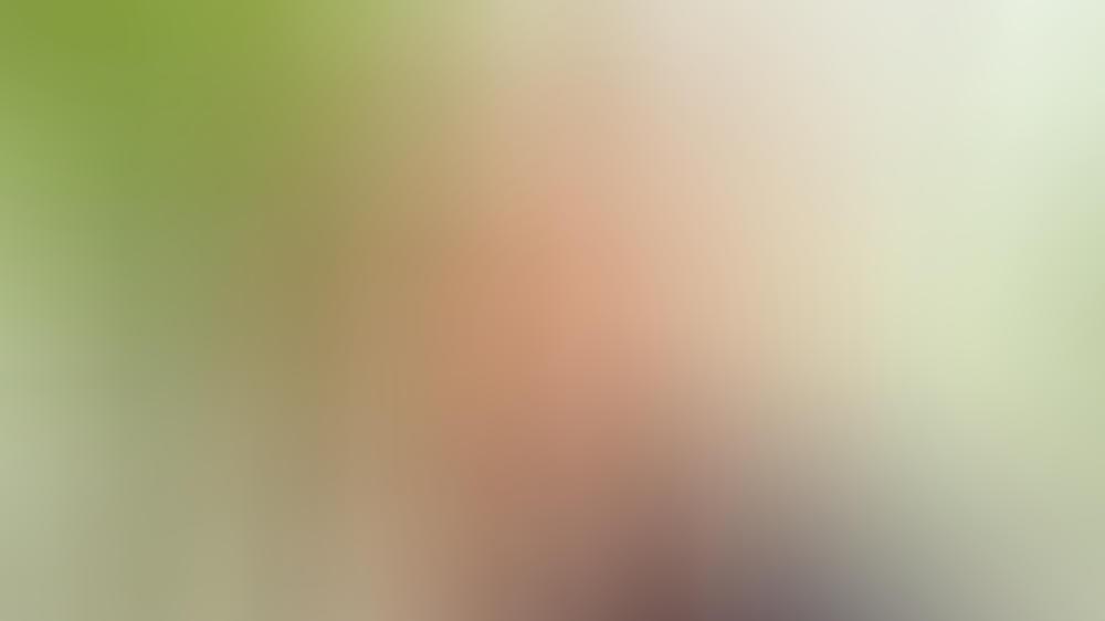 Tom Hardy Und Weitere Stars Werden Von Der Queen Geehrt