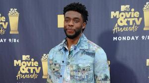 MTV Movie Awards: 'Black Panther' und 'Stranger Things' ...