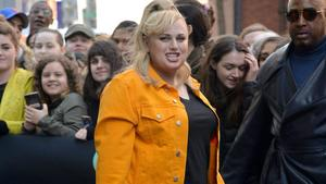 Rebel Wilson: Dating-Albtraum Los Angeles