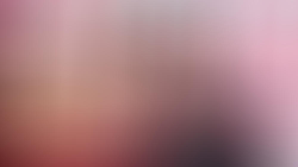 "Rebel Wilson und Adam Devine feiern ""Pitch Perfect""-Reunion"
