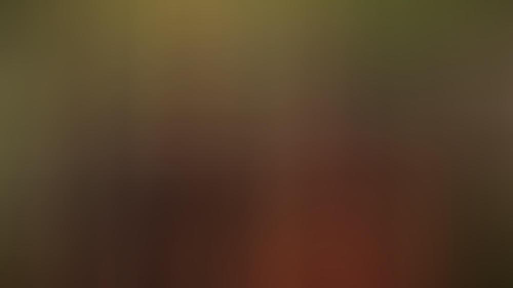 Friends Reunion David Schwimmer War In Jennifer Aniston Verliebt