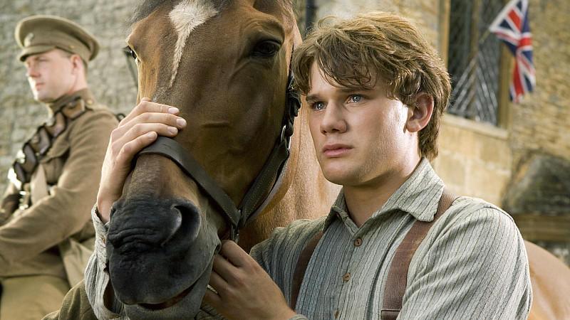 Gefährten Pferd