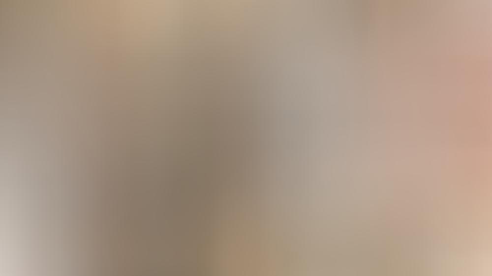 """""""Promi Big Brother"""": Die ersten acht Promis sind schon ..."""