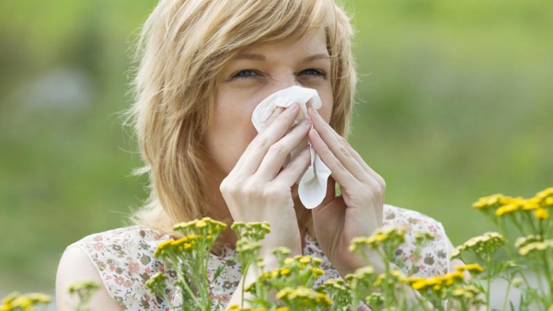 Pollen Aktuell