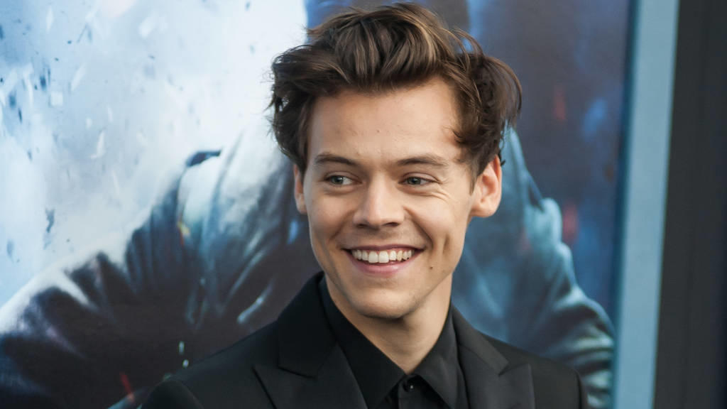 Harry Styles: One Direction? Meine Idee!