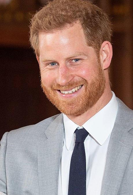 Sohn Von Prinz Harry
